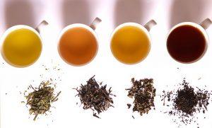 couleur des thés