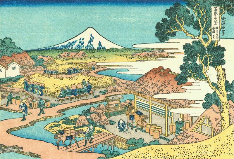 paysage thé japonais
